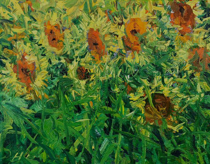 sunflowers - will harmuth