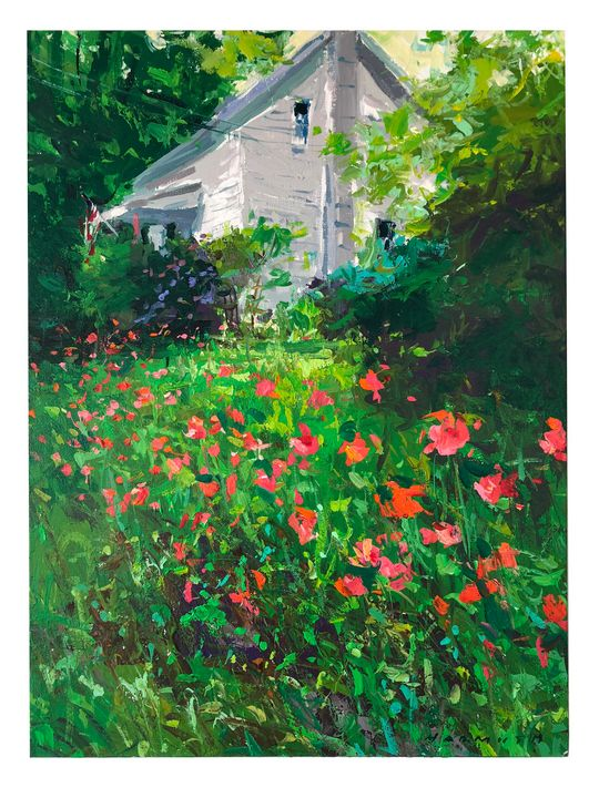 summer poppies - will harmuth