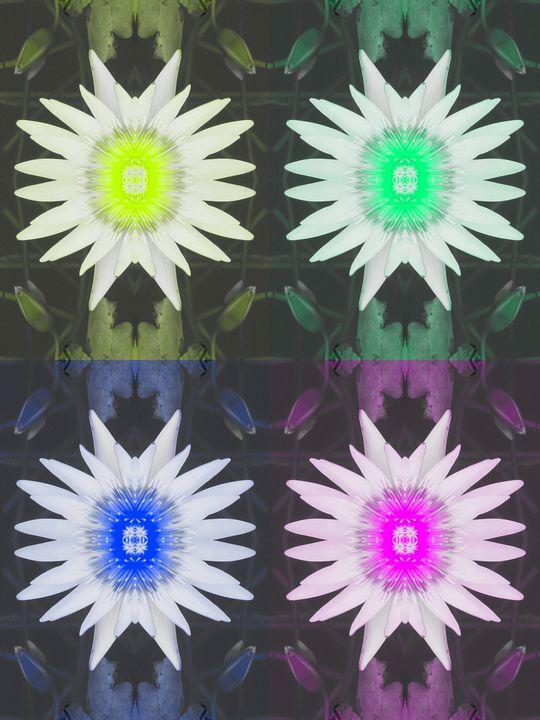 Lotus Pop - Relax Ink