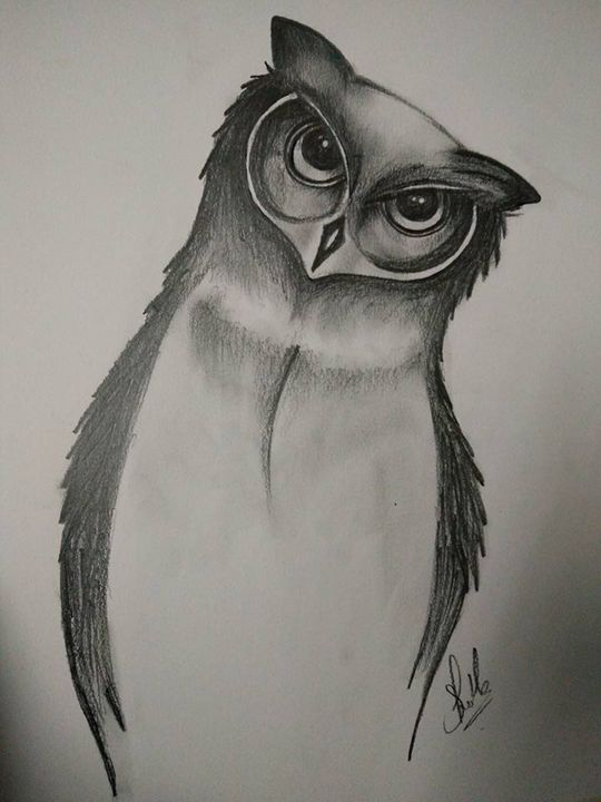 Eyes on you - Owl! - Rekha's