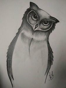 Eyes on you - Owl!