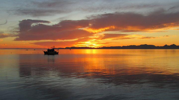 Baja Morning - Lisa M. Moore