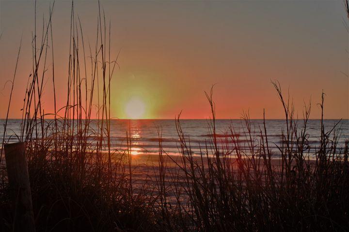 Myrtle Beach Sunrise - Lisa M. Moore