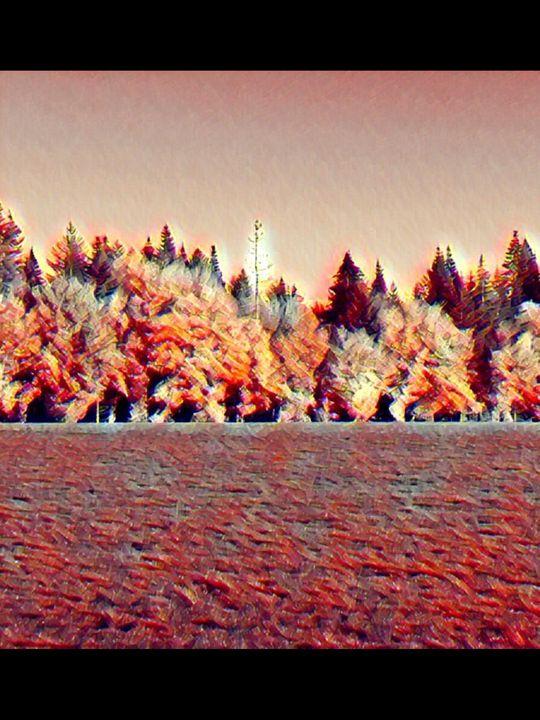 Sunburnt Trees - Little Things