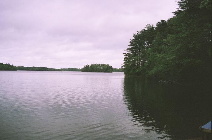A Spot of Pond - Blurd Photography