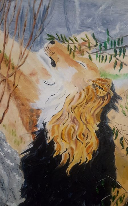 Lion - Alexander