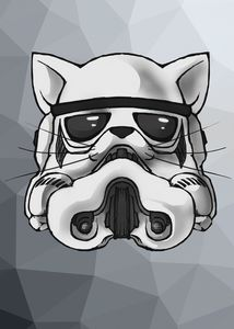 Kitten Stormtrooper Icon