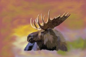 Autumn Moose - Sally Lannier Artist