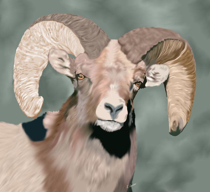 Rocky Mountain Ram - Sally Lannier Artist