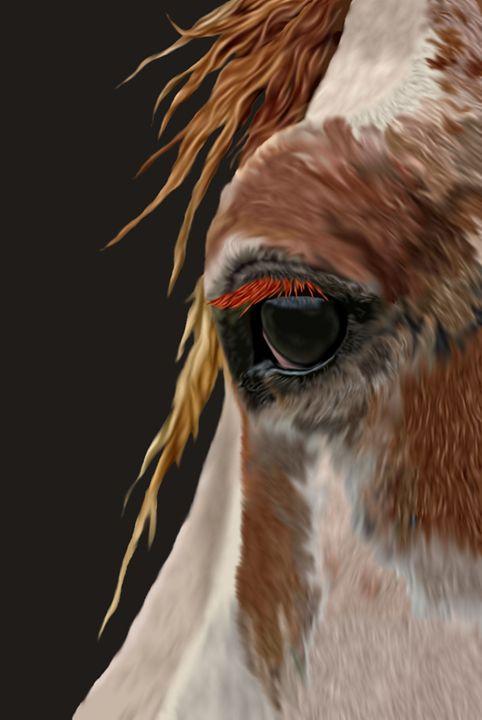 Sunny of the Nokota Wild horses - Sally Lannier Artist