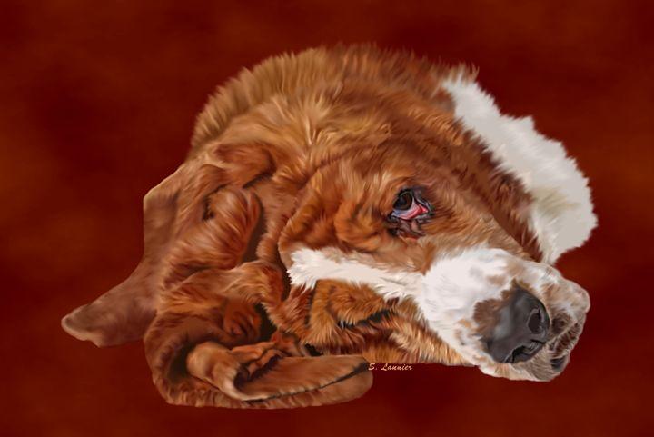 Basset Hound - Sally Lannier Artist