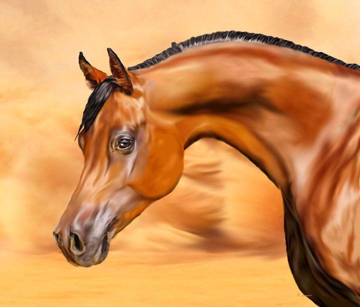 Desert Arabian - Sally Lannier Artist