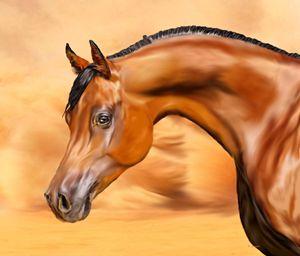 Desert Arabian