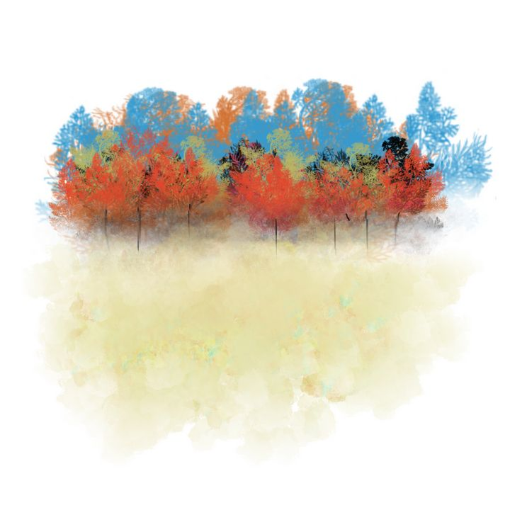 Colorful Trees in Blue and Orange - JHughes Works of Art