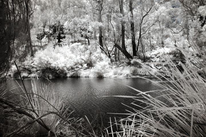 Finding Christmas - Teigan Blackshaw Photographer