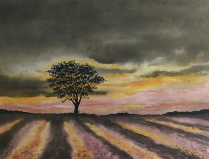 The Lone Tree - Charlotte Leddy Watercolor - Prints and Cards Only