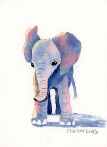 Baby Elephant - Charlotte Leddy Watercolor - Prints