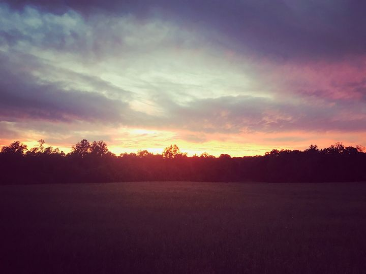 NC Field Sunset - Helping Hemppies by Amadis Dist