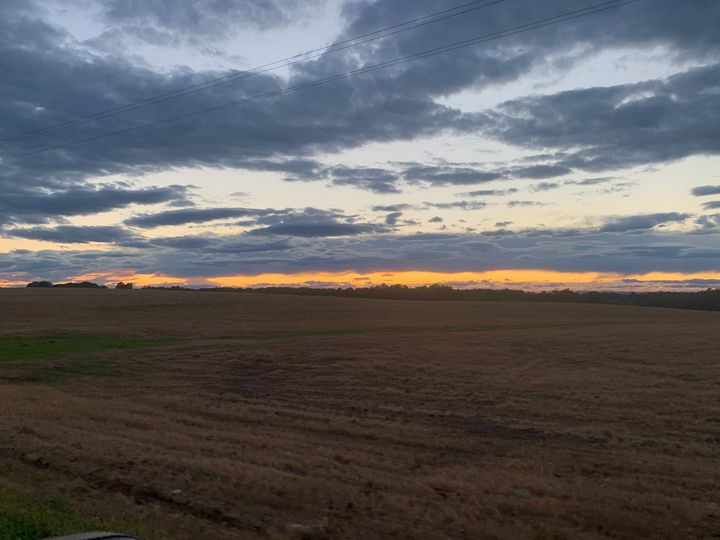 Iredell Sunset IV - Helping Hemppies by Amadis Dist