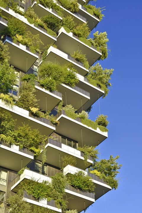 Vertical Garden - Marek Stepan Photographer