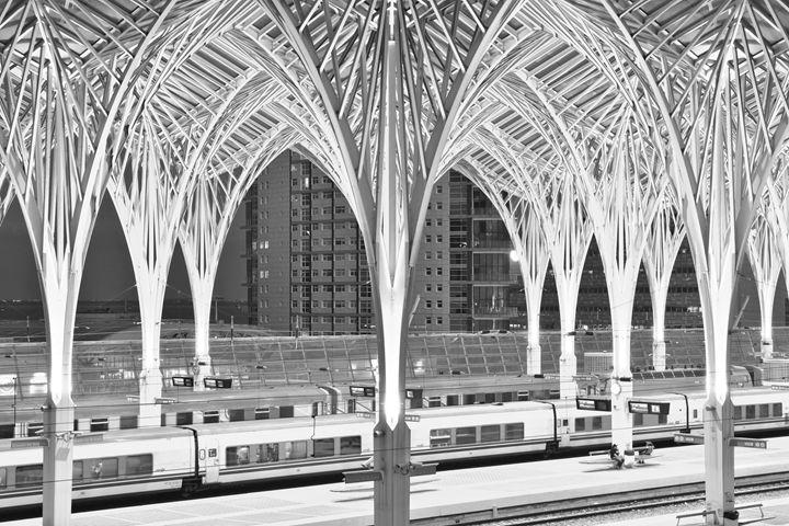 Lisbon Oriente Station - Marek Stepan Photographer