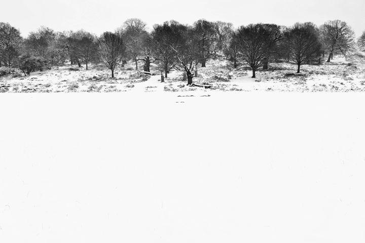 Winter Park - Marek Stepan Photographer