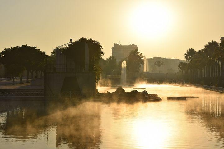Fog In Park - Marek Stepan Photographer