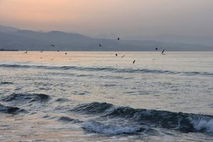 Malaga Coast At Dawn