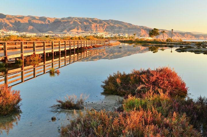 Desert Wetlands - Marek Stepan Photographer
