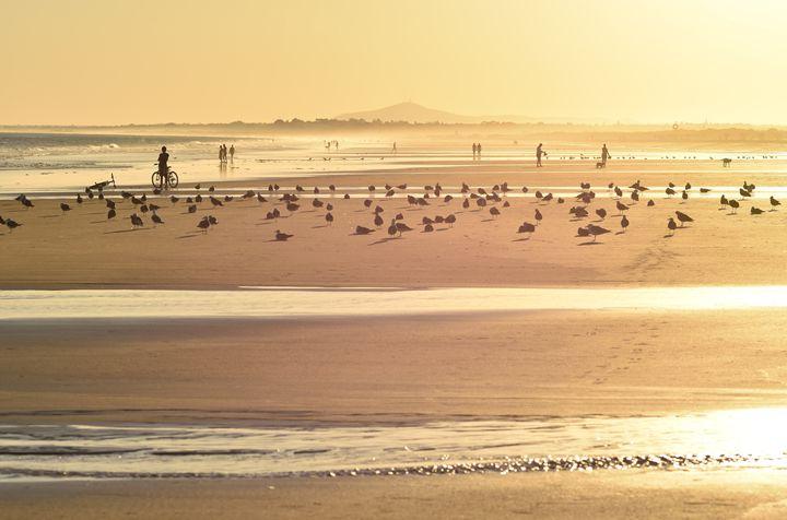 Golden Beach - Marek Stepan Photographer