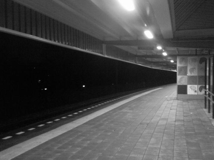 Holland Train Station # 3 - Bauhaus Press Shop