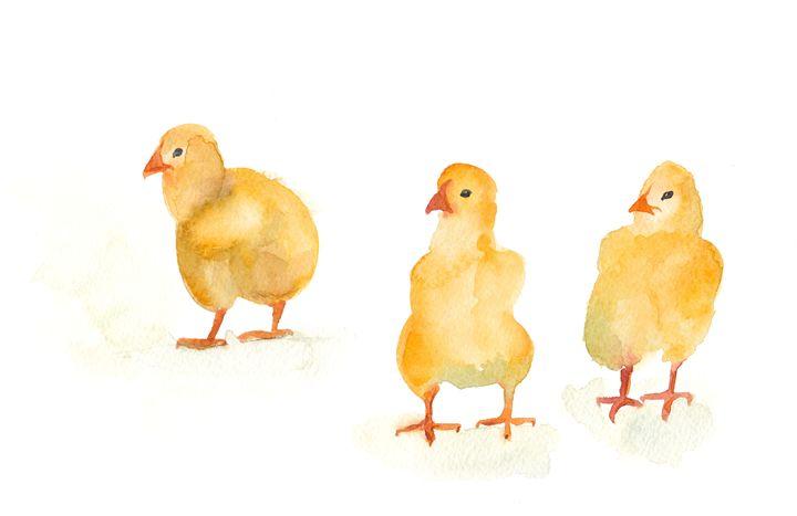 Three little chickens 2 - IRIKA
