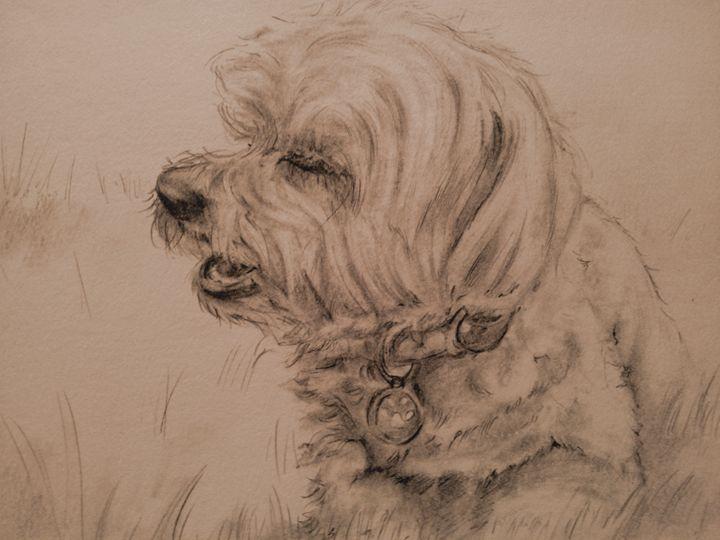 """My Dog"" - Gregory J Farrugia"