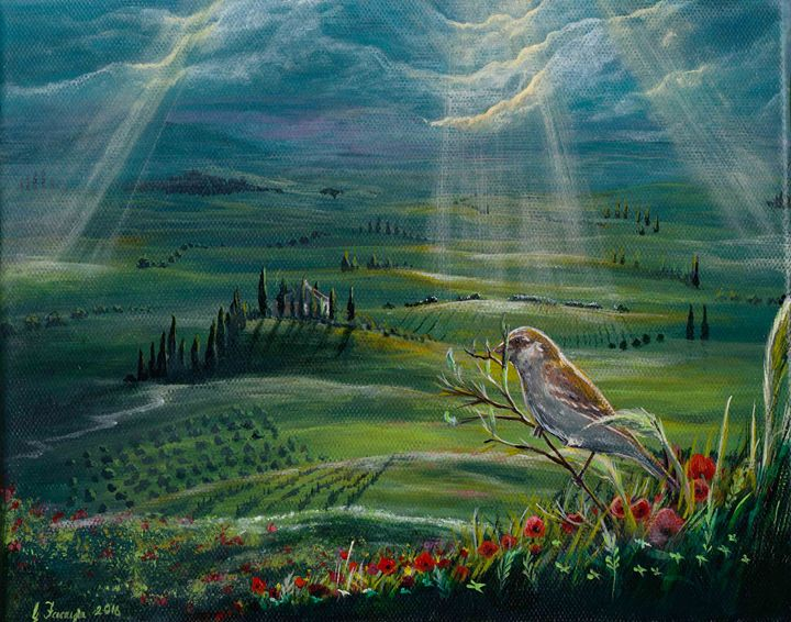 Tuscan Sparrow - Gregory J Farrugia