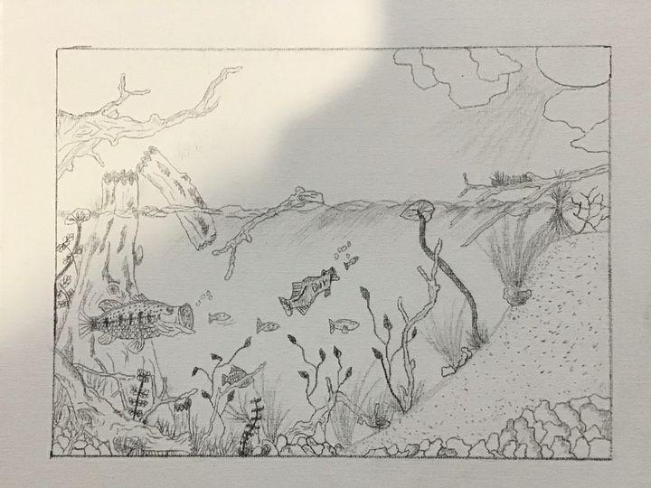 Freshwater paradise - Frank Horton Artwork