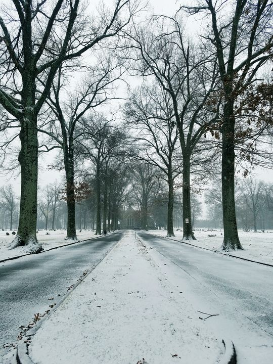 Snowy Abby - GuytoniousPhoto