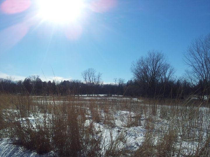 winter noon - Mariya Doroseff