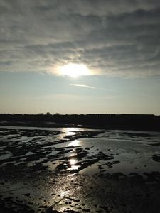 Sun reflected on tidal pools