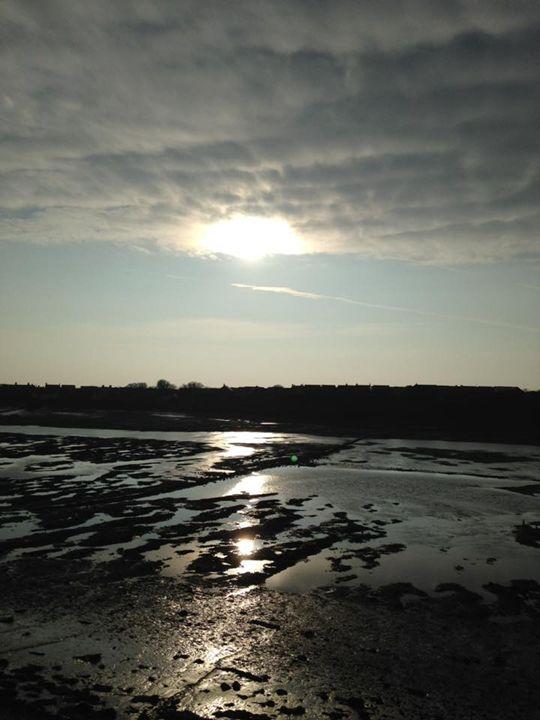 Sun reflected on tidal pools - Michelle Gardiner