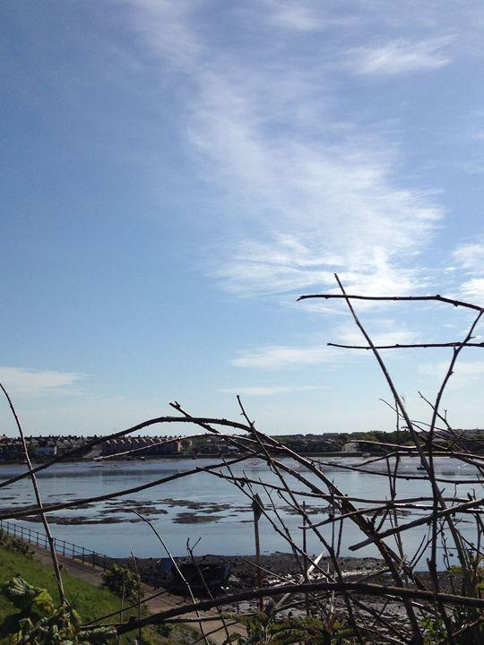 Views across the estuary - Michelle Gardiner