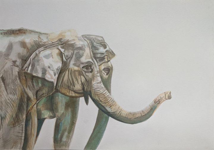 Asian Elephants - dreamArts7