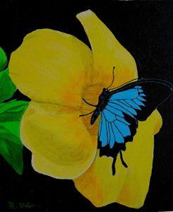 Flower n butterfly