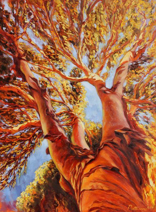 Look UP - Erick Pontvianne