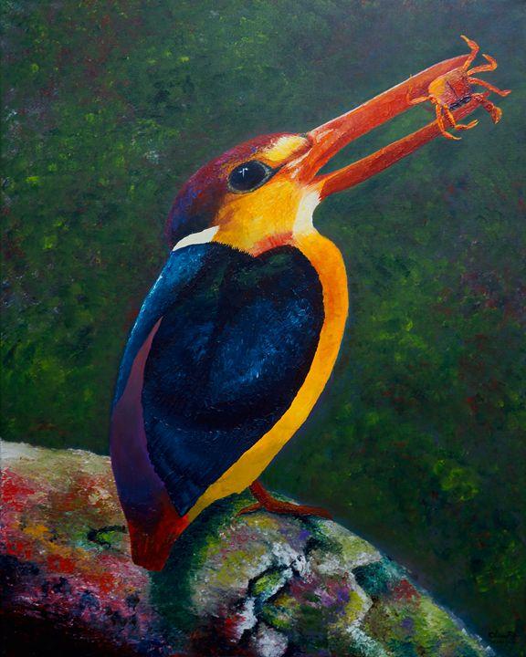 Oriental Dwarf Kingfisher - Prapatsorn_L