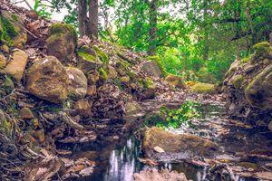 Shiny cascade