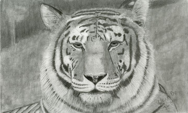 Tiger - WeirdoBc