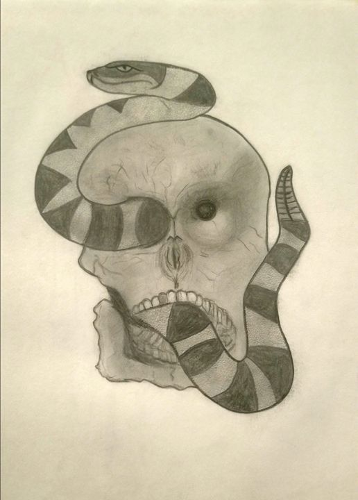 Snake through skull - Maria Aulisio
