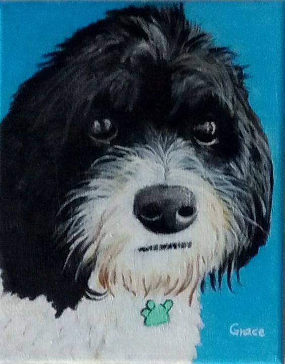 Archie the dog - Grace Hodges