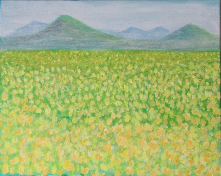 Canola field - Grace Hodges