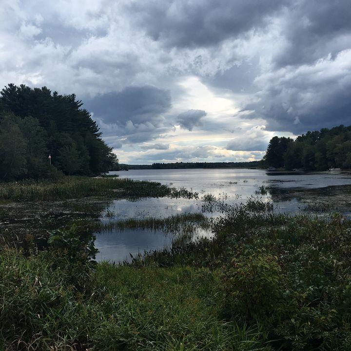 Symmetry - heARTwork Of Maine